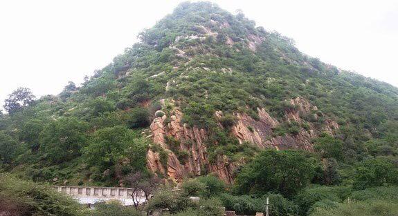 Jhalana Nature Park Jaipur